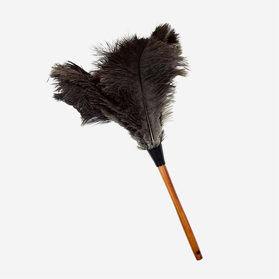Ostrich Feather Duster accessory