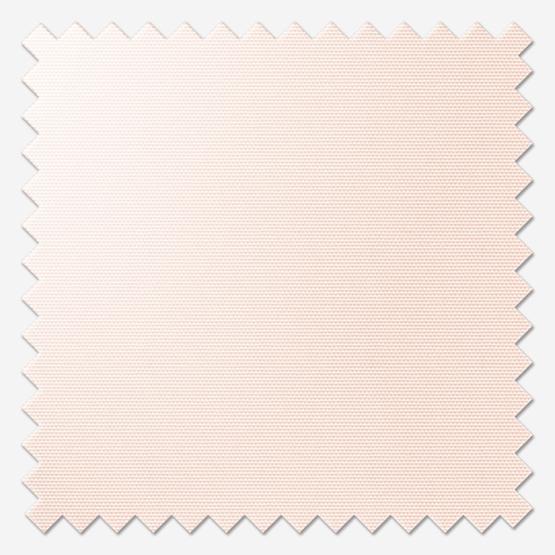 Signature Plain Lace