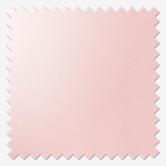 Signature Plain Peony Pink