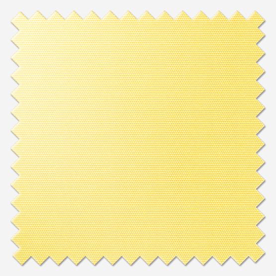 Deluxe Plain Primrose Yellow