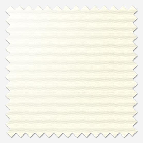 Signature Plain Vanilla Cream