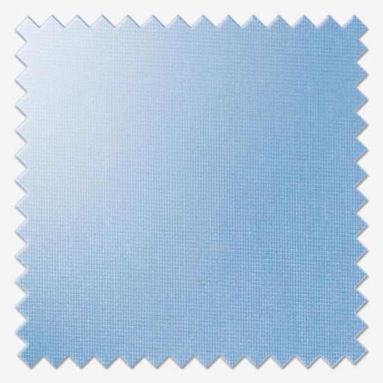 Acacia China Blue