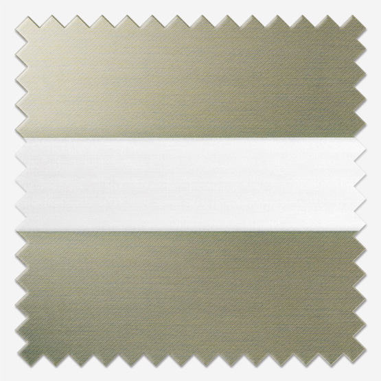 Dixie Taupe vision